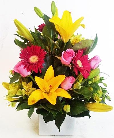 Hoa tươi và quà tặng chúc sức khỏe