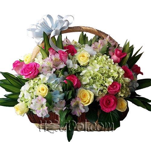 Điện hoa tươi và Quà tặng - Dáng xuân