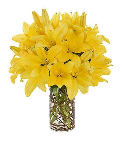 Những mẫu hoa màu vàng tươi đẹp