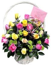 Vườn hồng 4