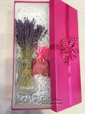 Hộp quà Lavender 7