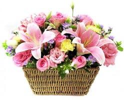 Hạnh phúc màu hồng