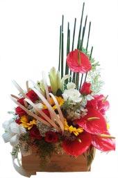 Hộp hoa chúc mừng 1